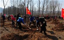 山东:泰安市义务植树尽责率达到82%
