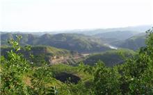 辽宁:北票市坡亩红枣林
