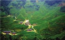 贵州从江县地方公益林补偿资金兑现9927700元