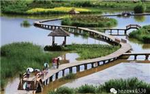 山东:菏泽市或有第二个国家湿地公园