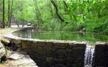 武汉:湿地自然保护区实施生态补偿