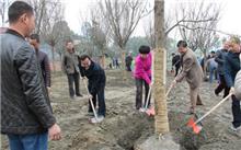 吉林:冬季义务植树活动启动