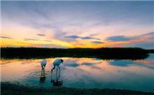 湖北:Shibalichangxia晋升国家级自然保护区自然保护区