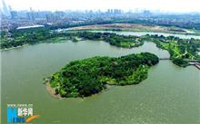 广东:海珠湿地晋升国家级湿地公园