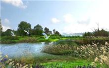 四川:新津白鹤滩飞行员成为国家湿地公园