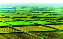 辽宁省千万亩森林生态建设工程增添动力