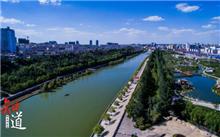 """郑州市在重症监护室,""""绿肺""""提高国家园林城市建设"""