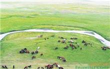 内蒙古:打造北方重要的生态安全屏障
