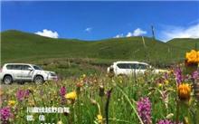 西藏:机构发展保驾护航举行生态红