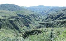 贵州:丹寨荒山荒地造林披绿装