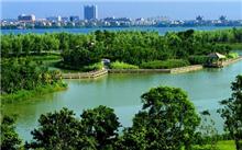 山东:济宁市扎实推进生态湿地建设