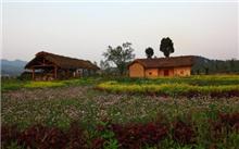 祝:5美丽的田园风光被评为3中国农村??被评为最美丽的乡村休闲