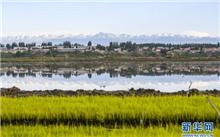 新疆:伊宁建设伊犁河谷湿地生态功能展示
