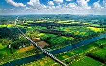 """山东:潍坊市""""十大生态造林项目""""建设城市森林网络"""