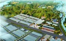 山东:冠县发展苗圃产业打造现代产业集群