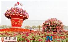 河南:绿化肯定安阳市22个单位获奖