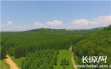 西宁市,森林覆盖率达32%