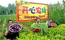 福建:清理掉国有人工林采伐国家示范农场
