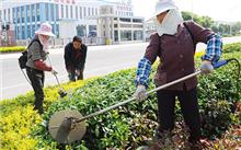 林业工人在辽宁凌源市添绿分外忙碌装载