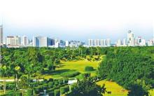 广东:力争到2020年全国首个国家森林城市群
