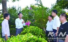 南通:如皋致力让乡土树种成为园林绿化新宠