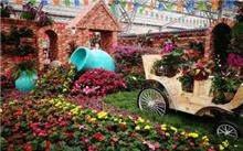 青州:花卉博览交易会圆满落幕交易额达2.1亿元