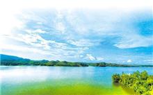 南宁:大王滩水库申报国家湿地公园
