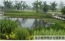 上海:成立市园林科学规划研究院