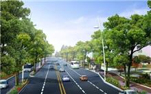 陕西岐山提升城区道路绿化