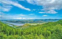 重庆:实现长江两岸绿化基本全覆盖