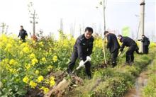 温州:植树造林好时节亲手种棵高富帅的树木吧