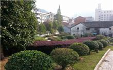 吉林:山城春季城市绿化工程全面展开