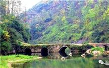南阳:淅川拓宽林业扶贫渠道实现山绿水清民富