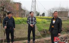 """湖北省:监利县以""""路苗结合""""模式开展绿色扶贫工作"""
