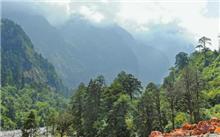江西省:万载县强化退耕还林、生态公益林管护