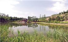 晋中市城区园林绿化促进城市可持续发展