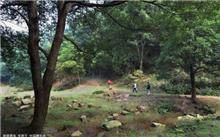 临澧划定县级森林资源自然保护区