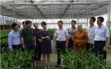 贵州省铜仁市开展2016年苗木花卉产业调研