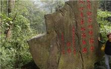 湖南省张家界市出台林地保护政策 杜绝违规占用林地行