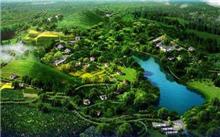 """冀州加强森林资源保护打造城市""""绿肺"""""""