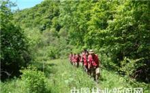 沂源县142万亩有林地为生态保驾护航
