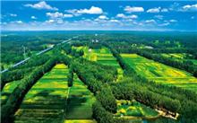 福建:生态建设,绿色发展的福建经验