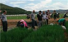 云南省泸西县花卉产业快速发展探源
