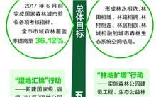 中国森林城市:共建共享生态福祉