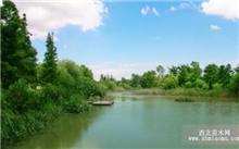 金华:浦阳江省级湿地公园再添新景