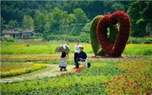 广元:践行低碳理念 促进绿色发展