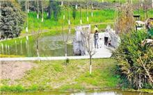 山东:增绿行动计划 开展绿地改造建设