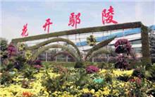 金华:2016中国花卉苗木交易会圆满落幕