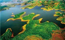 """保护""""地球之肾"""" 莫让湿地成为生态""""孤岛"""""""