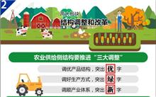 辽宁省一号文件:加强天然林保护